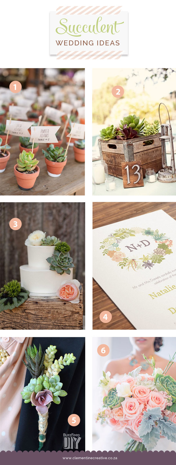 Diy Succulent Wedding Ideas