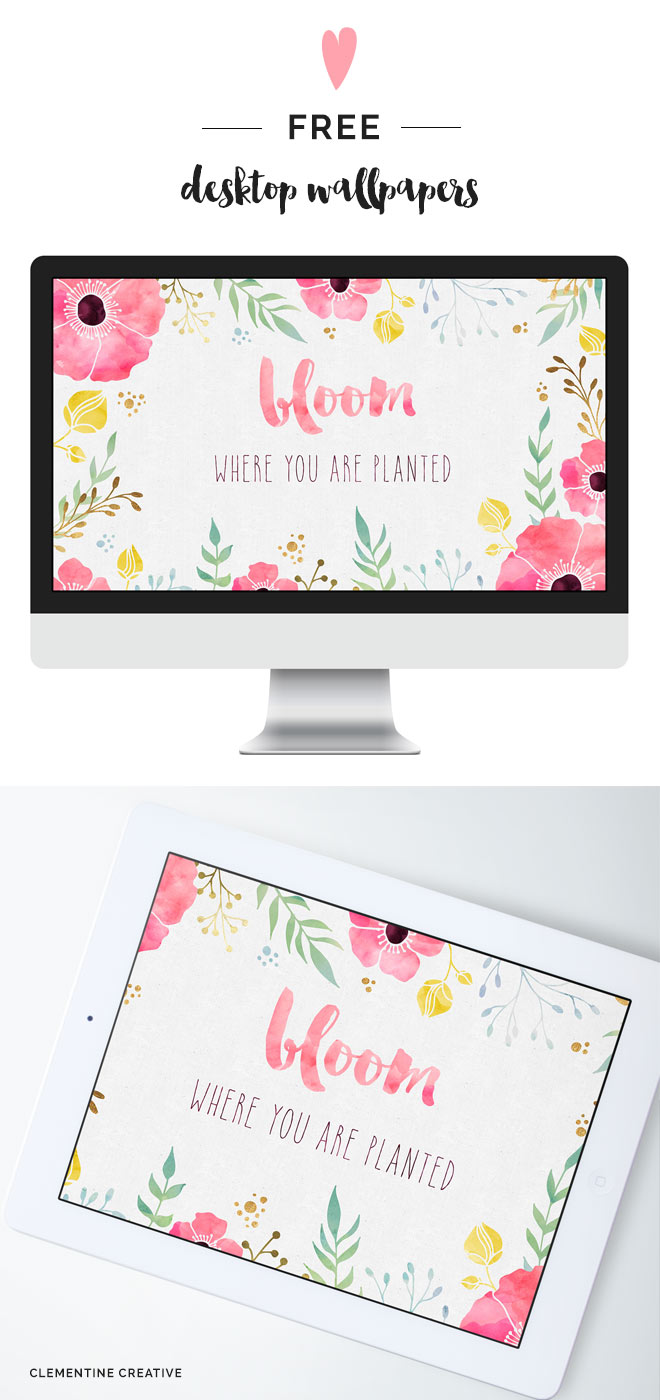 bloom where you are planted free wallpaper