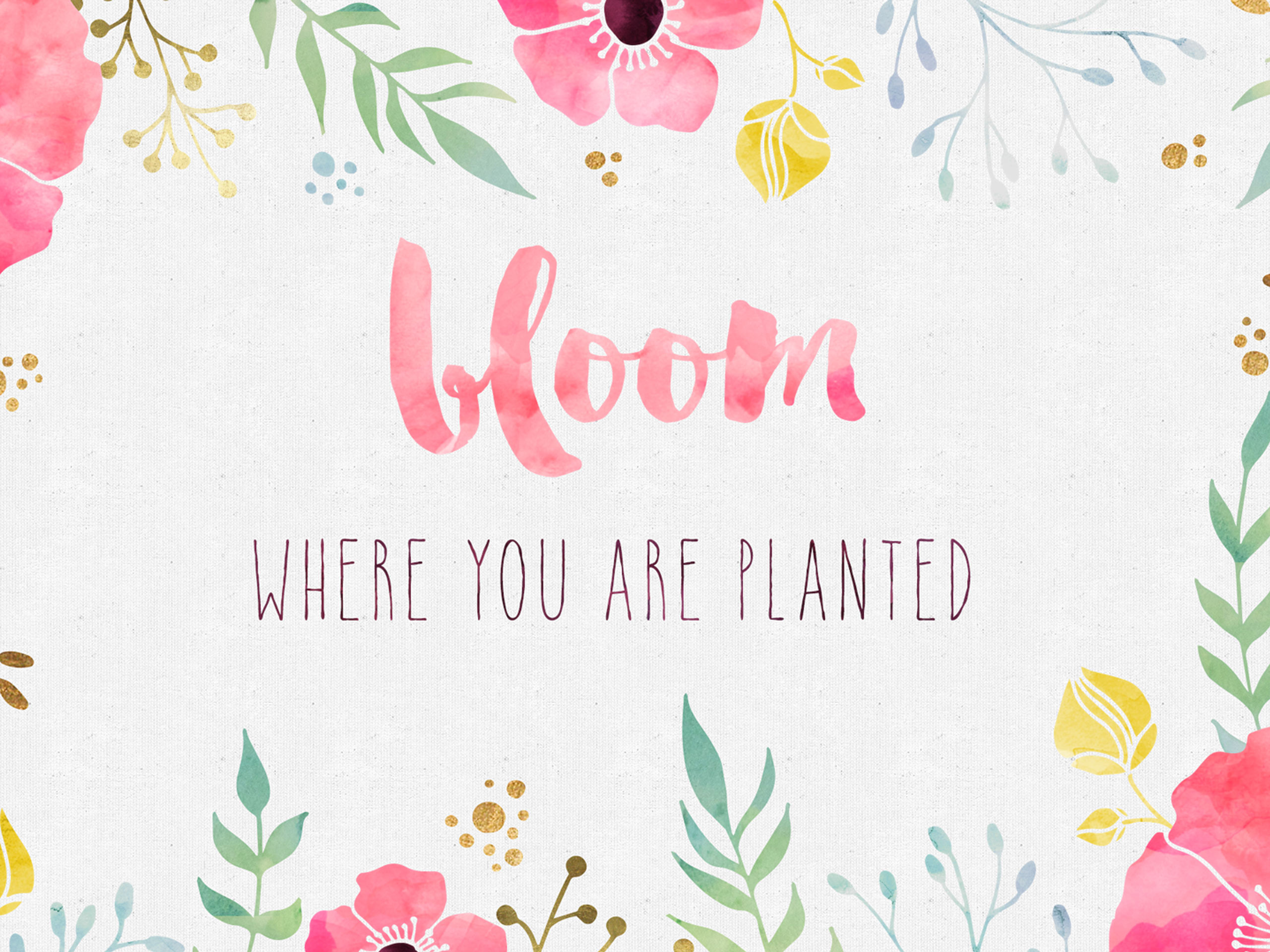 Future Quote Ipad Wallpaper Hd: Bloom Where You Are Planted