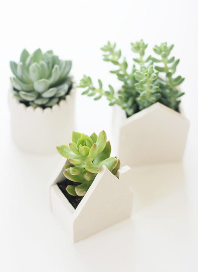 succulent house pots | peek it magazine