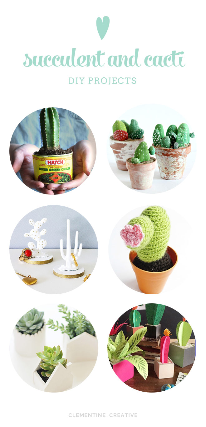 6 succulent and cacti DIY projects