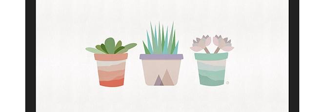 Free Desktop Wallpaper: Succulents