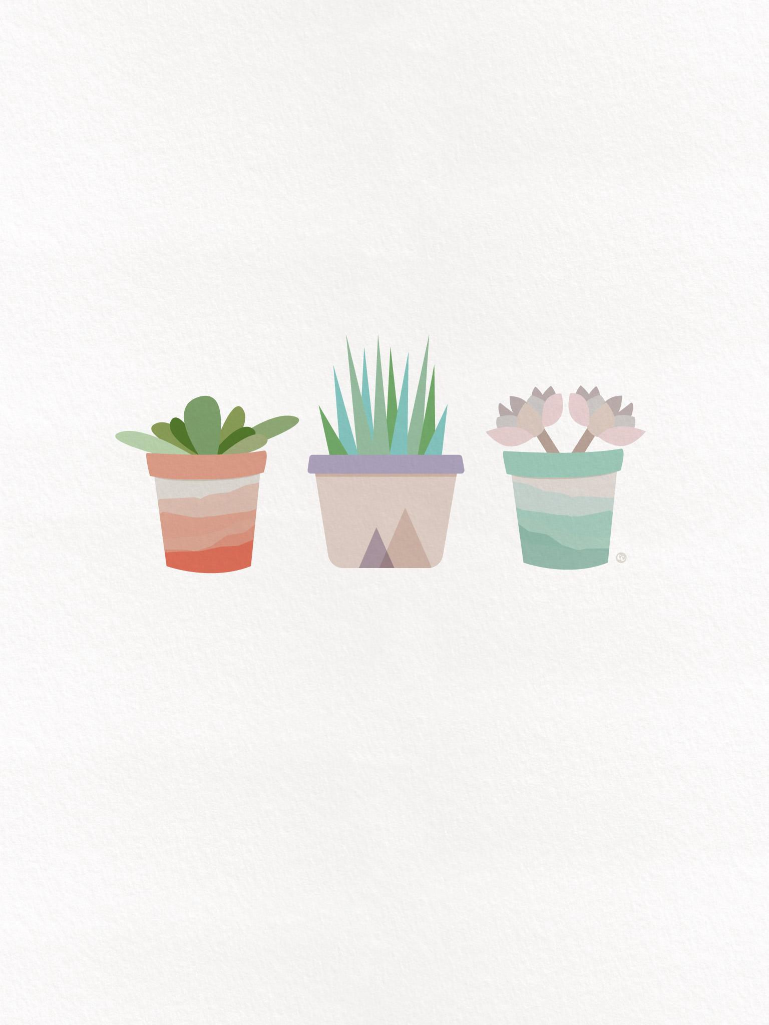 Free Desktop Wallpaper Succulents