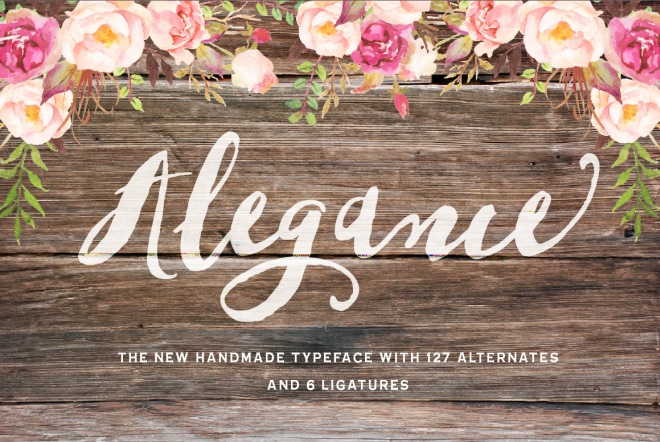 alegance hand painted typeface