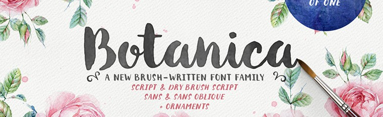 My Favourite Brush Lettered Fonts: Part 1