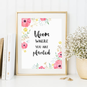 This beautiful printable art will make a great addition to your desk or home decor. If this bloom where you are planted quote is one of your favourites, you'll love this stunning floral art print.
