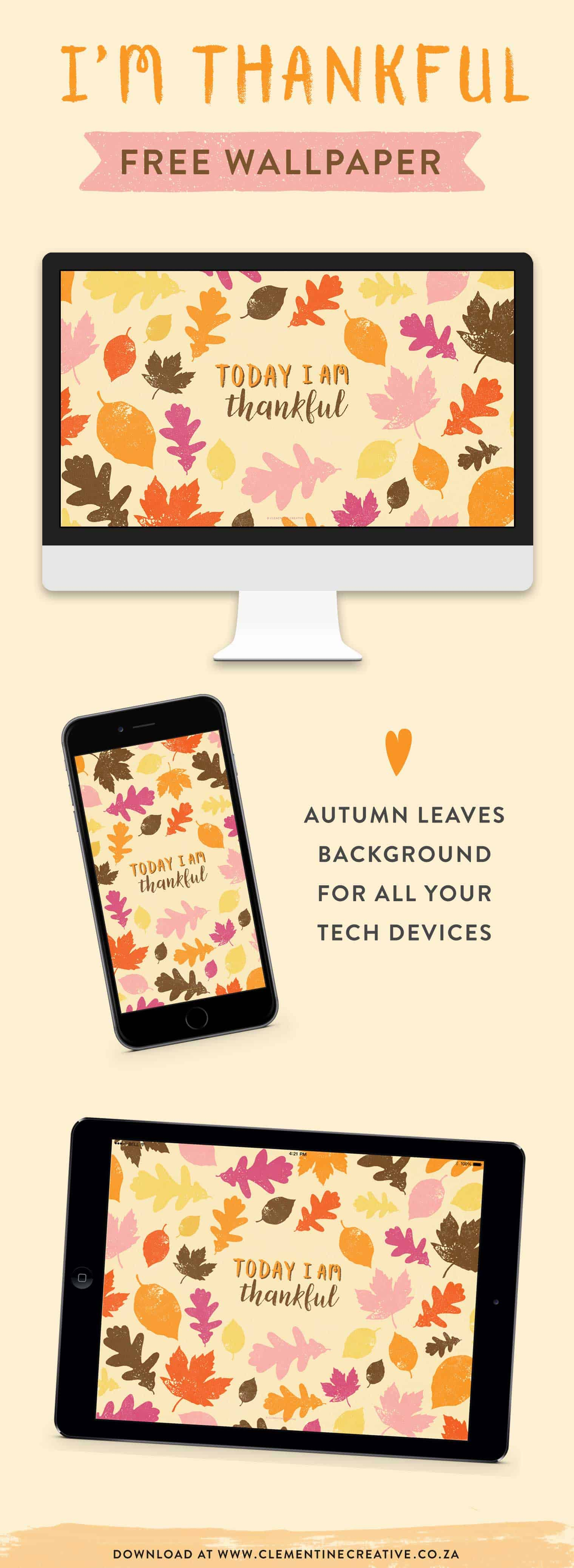 free autumn leaves Thanksgiving wallpaper background
