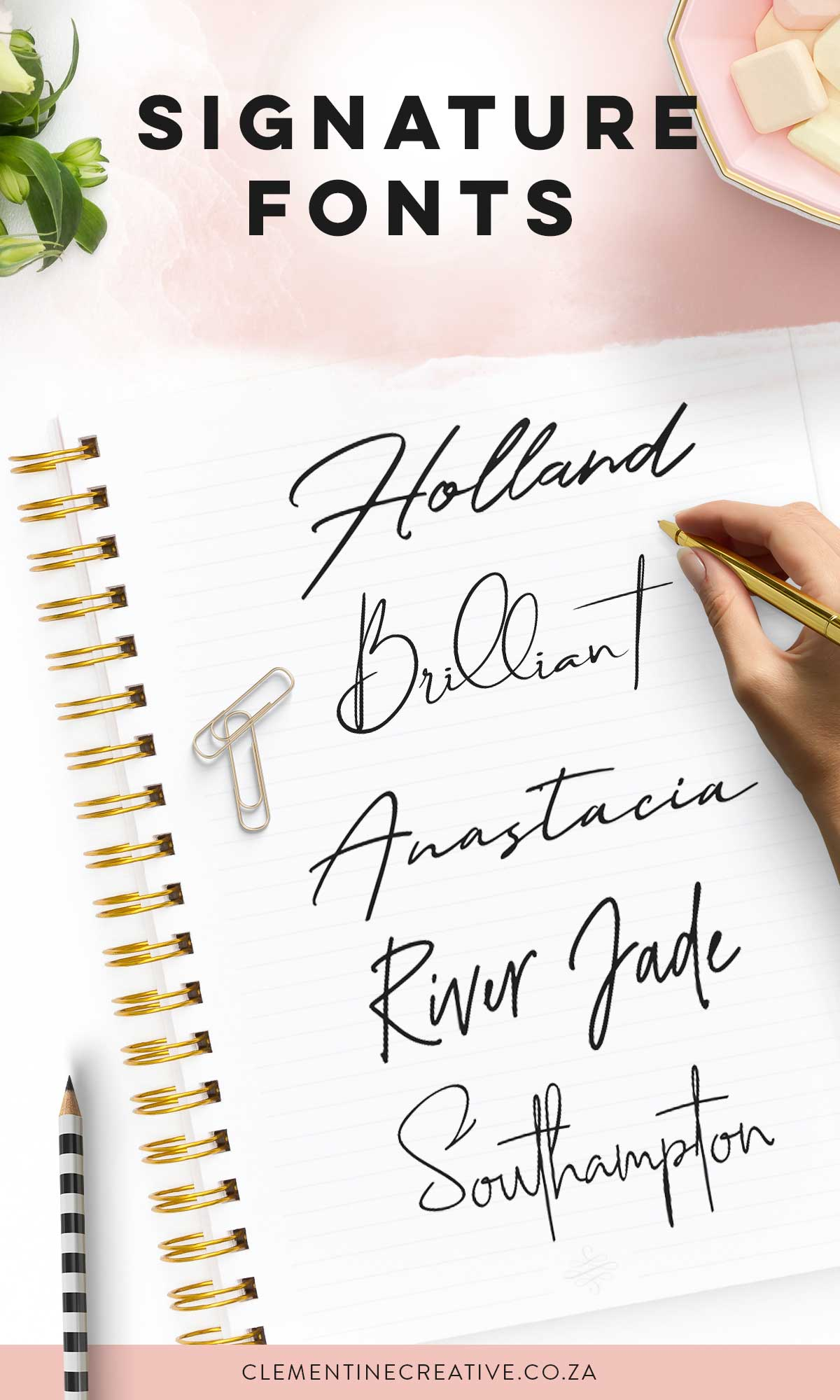 sophisticated signature fonts